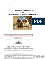 curs_durere-transfer_ro-28mar-343453.ppt