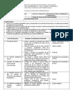 PLANIFICACION DE PENSAMIENTO MATEMATICO