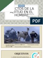 EXPOSICION-EFECTOS-DE-LA-ALTITUD-EN-EL-HOMBRE-DIAPOSITIVAS