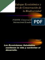 tema 4.1 SENAGUA-Enfoque-Ecosiste¦ümico_DomingoParedes