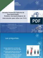 modelos_neuropsicologicos