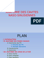 anatomie des cavitées naso-sinusiennes