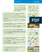 esquema seres vivos.pdf