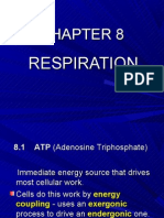 biology-respiration- Chapter 8