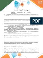 3.Formato - perfil de cargos