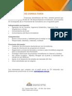 Perfil de Practicante de Consultoría