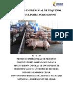 PROYECTO PORCINO AÑO 2018.pdf