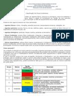 Classificação dos Riscos Ambientais.pdf