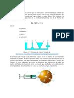 Principio de Pascal INFORME.docx