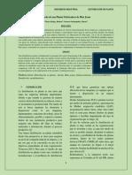 01 Planta fabricadora de blue-jeans Articulo.pdf