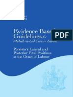 Persistent Lateral and Posterior Fetal Positions  at the Onset of Labour_3.pdf