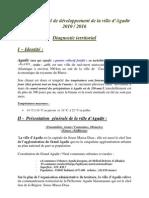 Monographie-agadir-pcd
