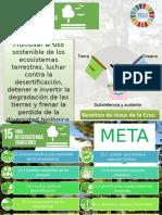15 Vida de ecosistemas terrestres.pptx