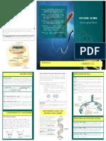 Nucleic Acids Brochure