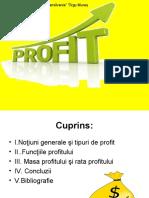 Profitul_1