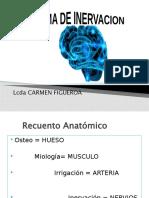 Recuento-Anatómico.pptx-Reparado.pptx