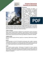 PNFElectricidadING