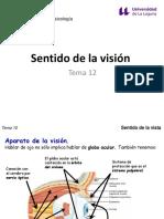 Tema 12 - Sentido de la visión