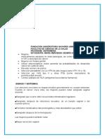 DOCUMENTO APS 2.docx