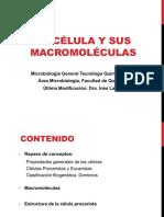 Teórico_2 microbiologia.pdf
