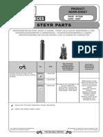 Steyr(2).PDF