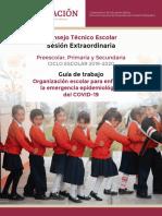 1. Guía del CTE Extraordinaria Marzo 2020.pdf