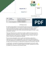 reporte .docx