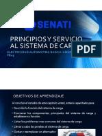 PRINCIPIOS Y SERVICIO AL SISTEMA DE CARGA