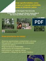 Los sistemas agroforestales como herramienta para el manejo sostenible de bosques en Amé