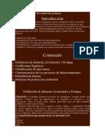349553793-Almacenamiento-de-Materias-Primas.docx