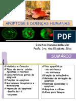 aula1-apoptose (1)