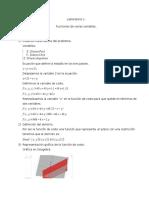 Laboratorio 1 Cálculo Multivariable Jaime Paba.docx