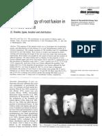 The morphoogy of root fusion.pdf