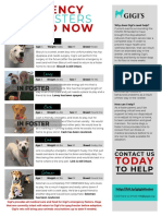 Gigi's Emergency Foster Flier (FINAL)