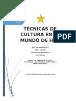 cultura fisica proyecto 12.docx