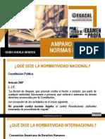 2_22-2-20_GAG_Amparo_normas_legales.pdf