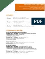 Formato de Curriculum-vitae-profesional-naranja