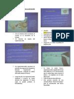 CAMBIOS FISIOLÓGICOS EN LA GESTACIÓN (1)