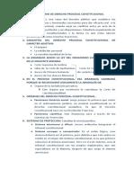 Laboratorio Derecho procesal constitucional - primer pacial.docx