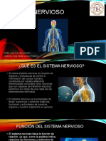 Sistema-nervioso.pptx