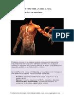 349115400-El-Sistema-Nervioso-y-El-Movimiento-1.pdf
