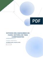 240097841-Informe-Experimento-Nº-13-Equilibrio-de-Tres-Componentes.docx