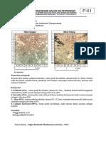 Lampiran Petrografi Batugamping.pdf