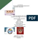 a case study on npa 2.o.pdf