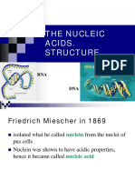 DNA Structure - powerpoint