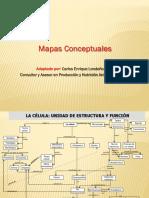 EJEMPLO DE MAPA CONCEPTUAL.pdf