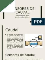 Sensores de caudal.pptx