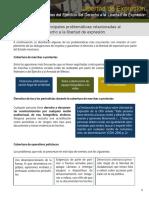 Controversias_al_garantizar_el_derecho_a_la_libertad de_expresion.pdf