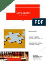 Descripción del Consumidor