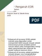 Dwi Yerlis Rahmi - 1810246959 - Faktor Pengaruh EOR